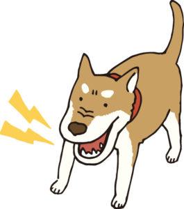 犬 鳴き声