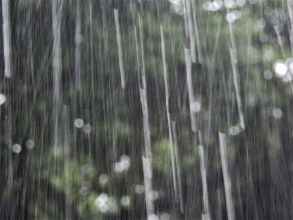 雨 濡れない