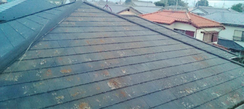 屋根汚れ 捲れ